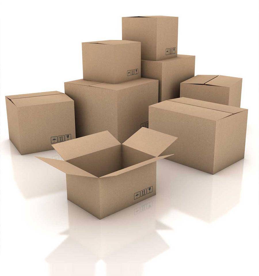Fabricante de cajas de cartón - Ricardo Arriaga - Cajas cartón - Caja cartón