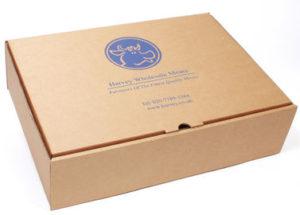 cajas automontables con logo